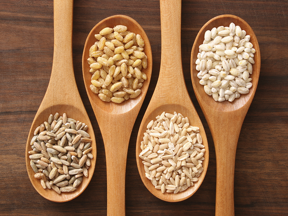 Food Sources for Vitamin B12