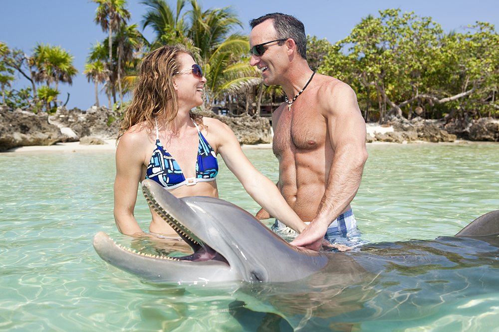 Adult couple enjoying encounter with bottle nosed dolphin